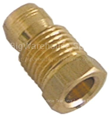 Locking screw M10x1 for pipe ø 6mm Qty 1 pcs
