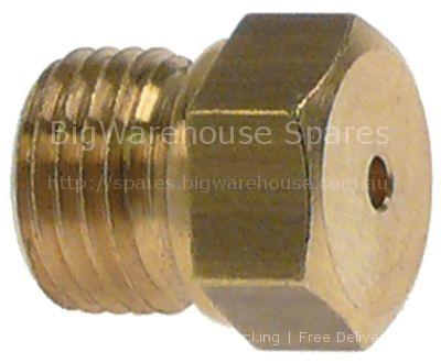 Gas injector thread M10x1 WS 12 bore ø 1,2mm